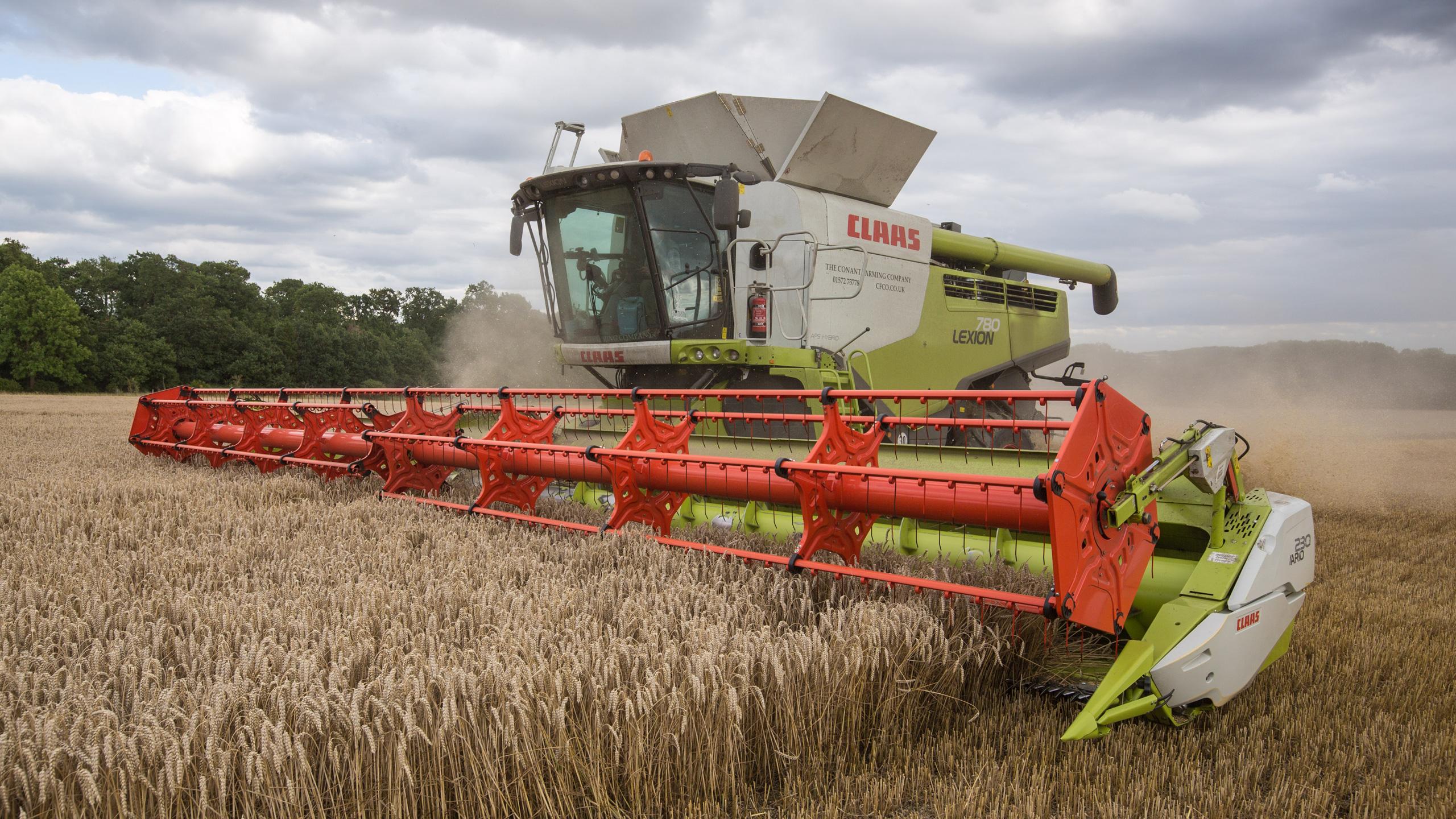 Claas Lexion 780 Combine Harvesting Wheat