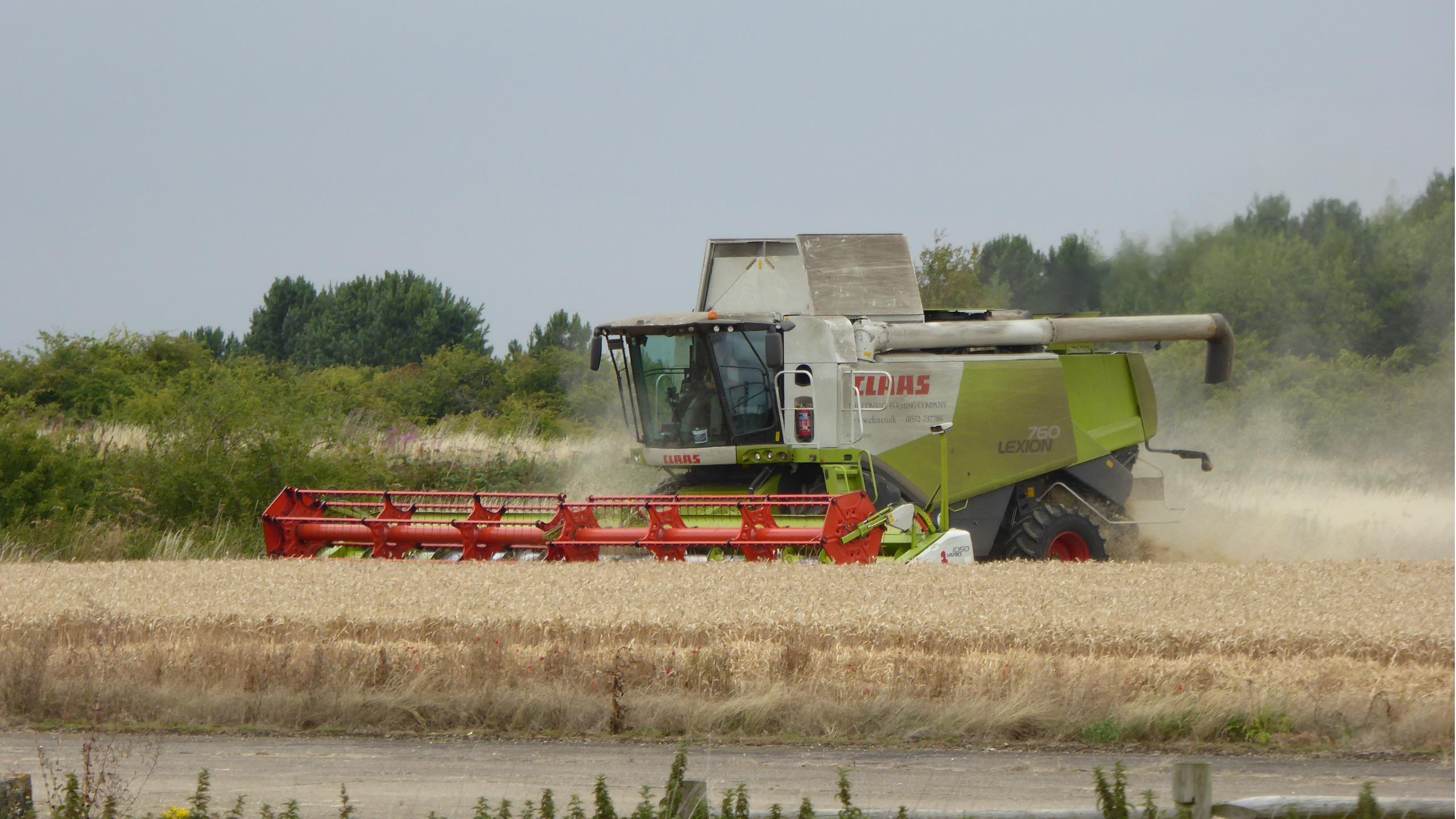 Class Lexion 760 Combining Winter Wheat
